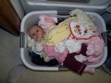 2006 Mary laying in a basket of clean clothes.