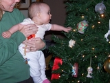 Mary in her mommy's arms reaching out to a Christmas tree branch.